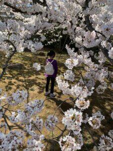 春を体感♪