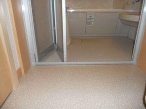 脱衣所と浴室の間に10cmくらいの段差がありませんか?